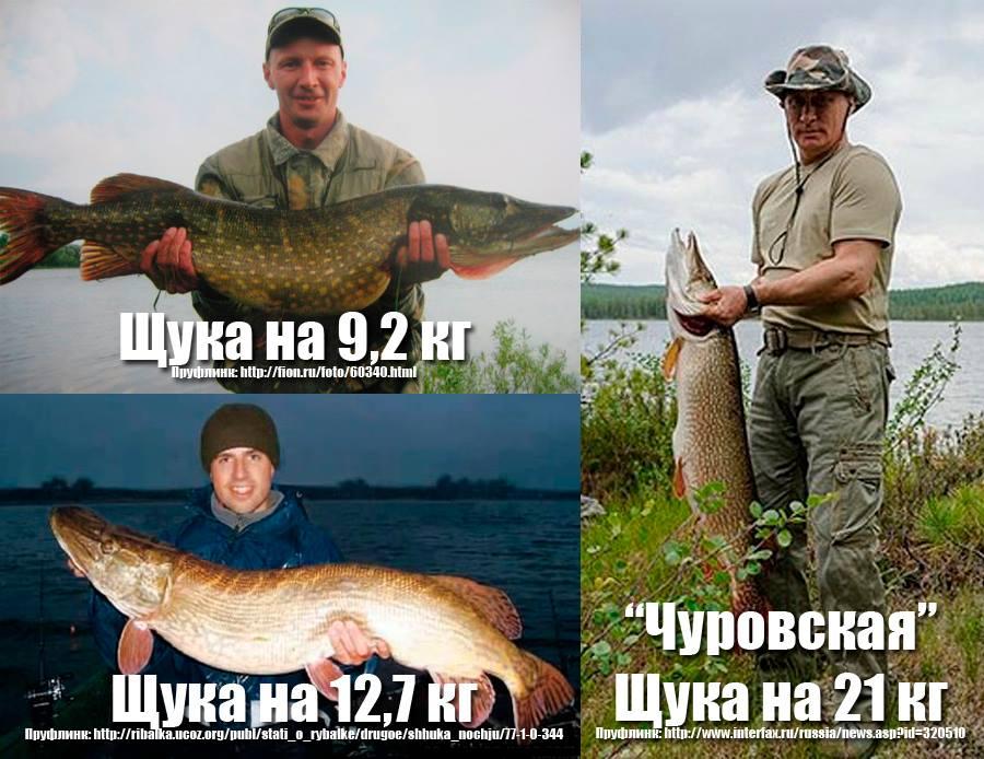 во сколько ездят на рыбалку