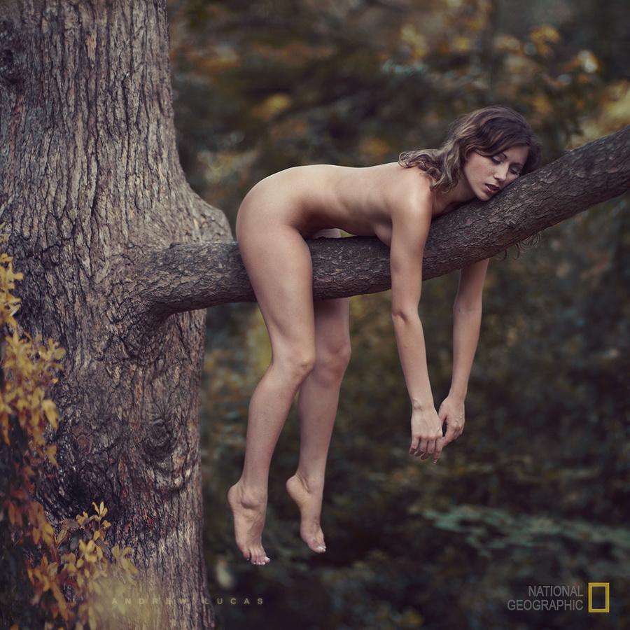 Скс ночю на природе смотреть онлайн 7 фотография